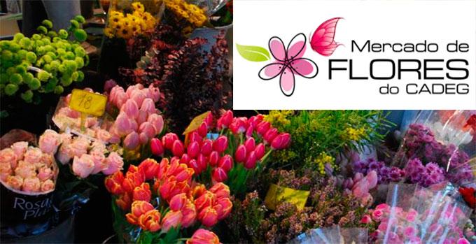 CADEG Flores